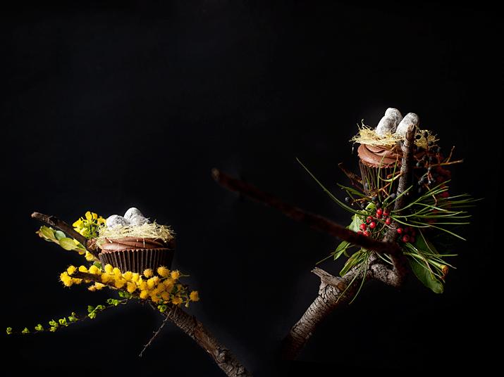 Cupcakes Nido De Pascua