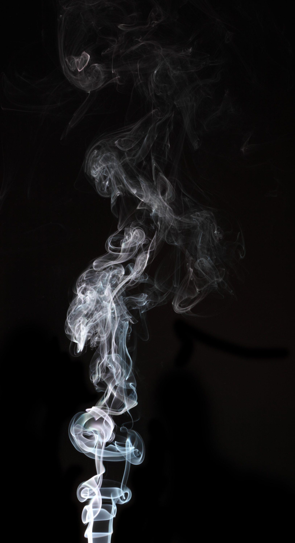 Smoke0219 L.jpg